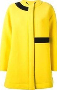 модные цвета пальто 2016-2017 фото (25)