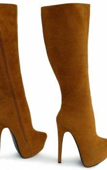 модные сапоги на каблуке фото (3)
