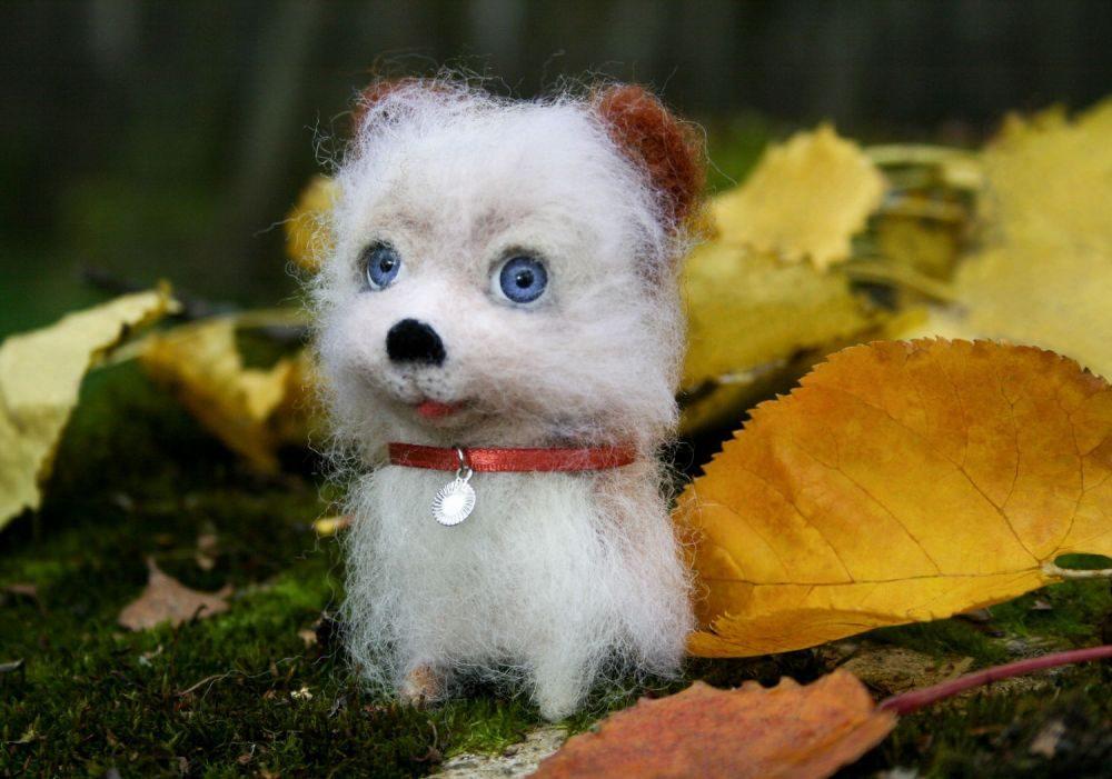 Шерстяная собачка