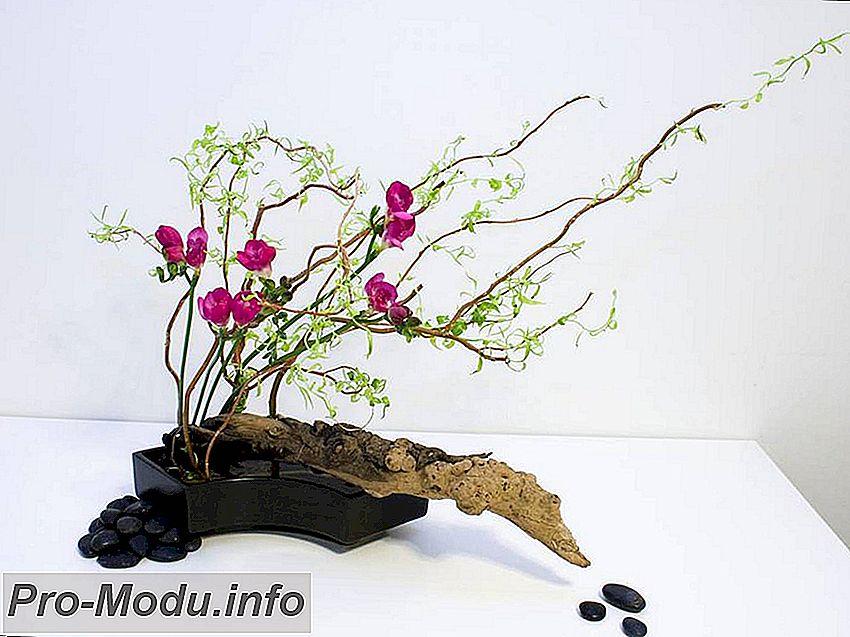 Икебана своими руками: идеи и техники создания природного декора интерьера