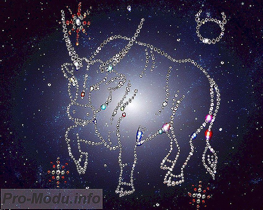 Детальный гороскоп на 2019 год