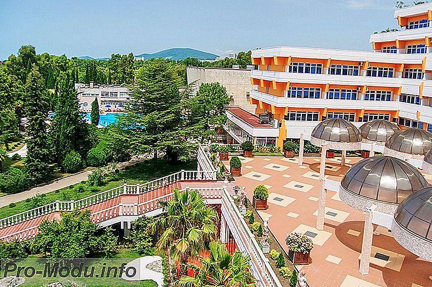 Курортный город Адлер – уникальное место, куда стоит поехать летом 2019