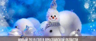 Новый 2019 год в Ярославской области