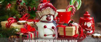 Подарки на Новый 2019 год: идеи