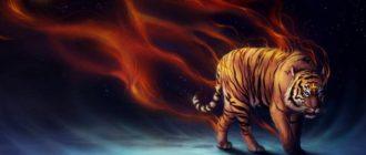 Гороскоп на 2019 год для Тигров: женщины и мужчины
